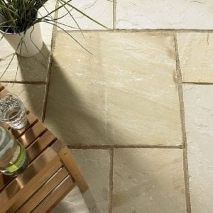 indian sandstone Mint fossil